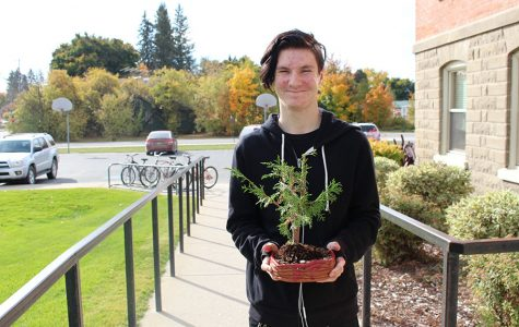 Students Create Bonsai Trees